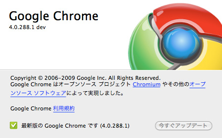 Google Chrome 4.0.288.1