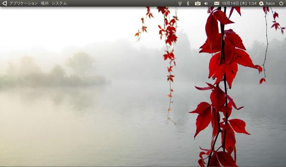 Ubuntu 10.10 Install